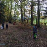 2018 - Sortie en forêt0011